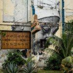 Portrait, Havana 2015